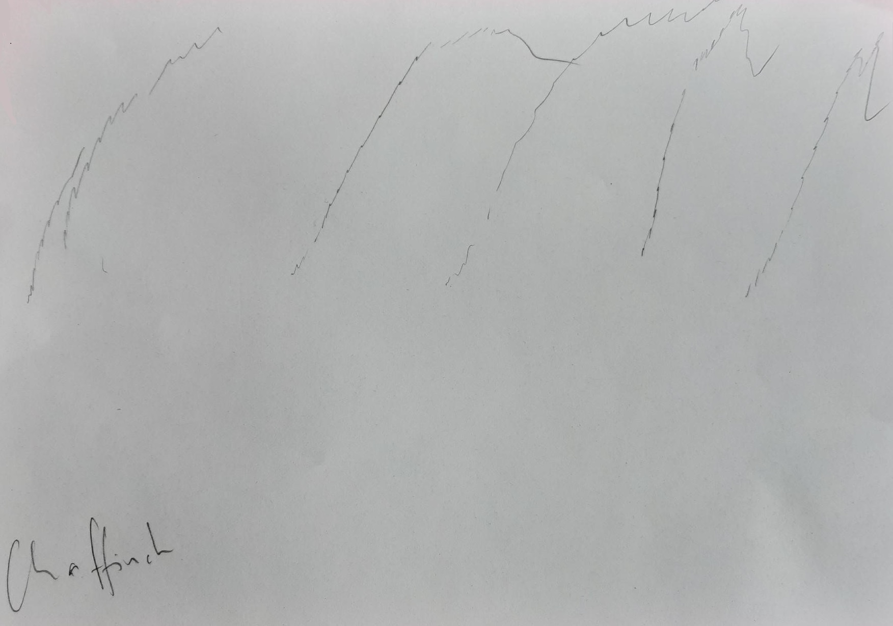 Drawing of chaffinch song